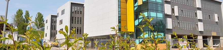 La Maison des langues et de l'international | UNICAEN | campus 1